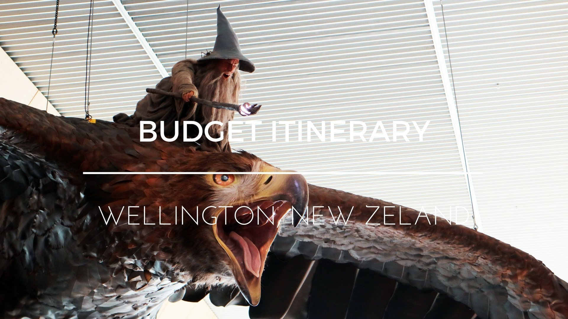 Wellington New Zealand Travel Guide