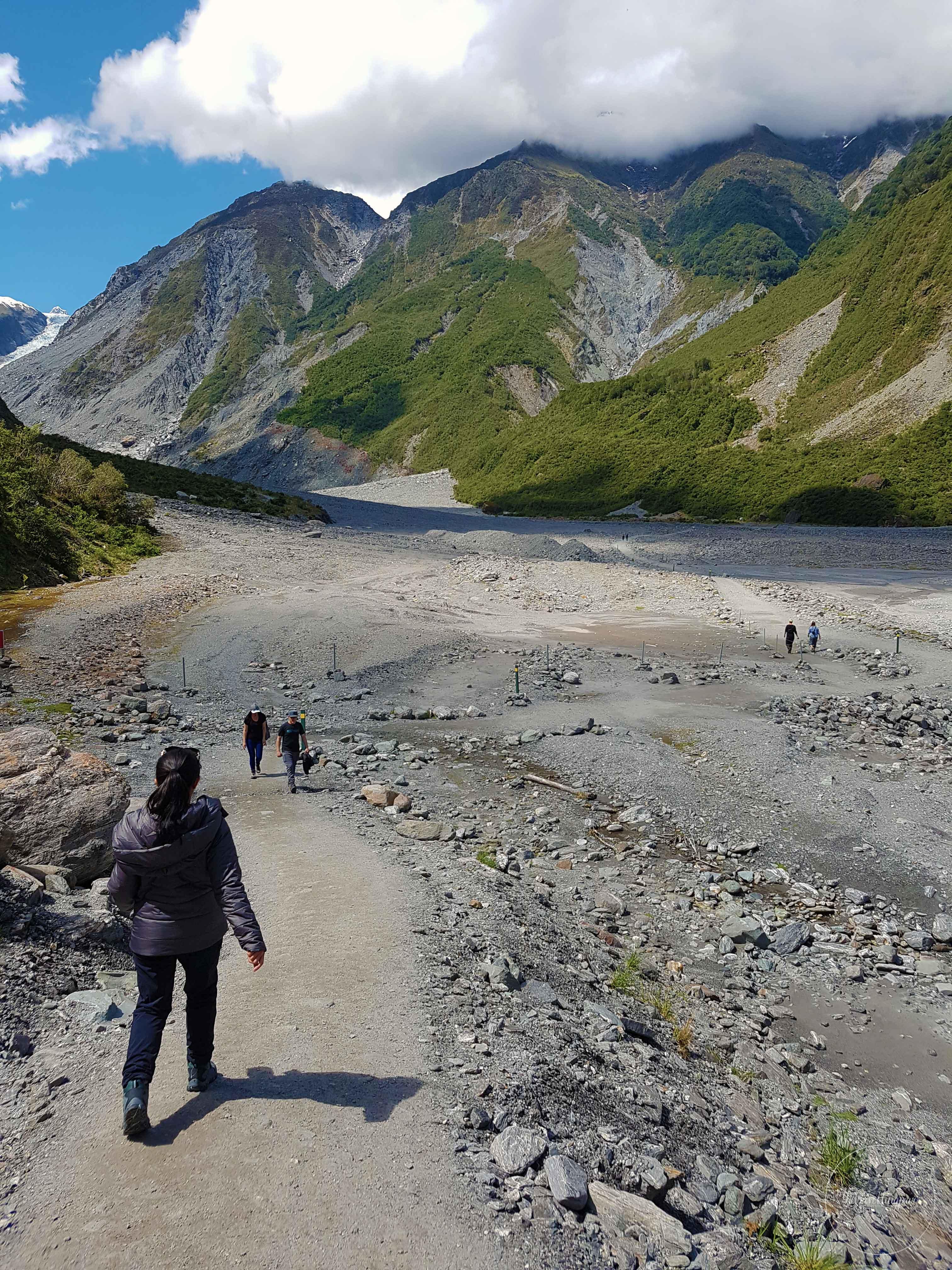 Fox-Glacier-Walk