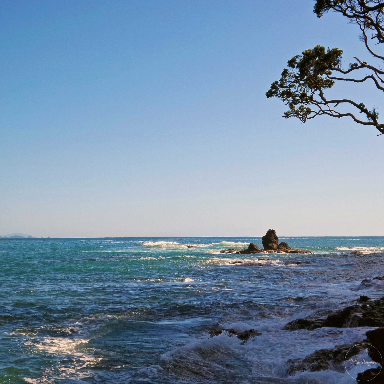 Pebby Bay Tutukaka Coast