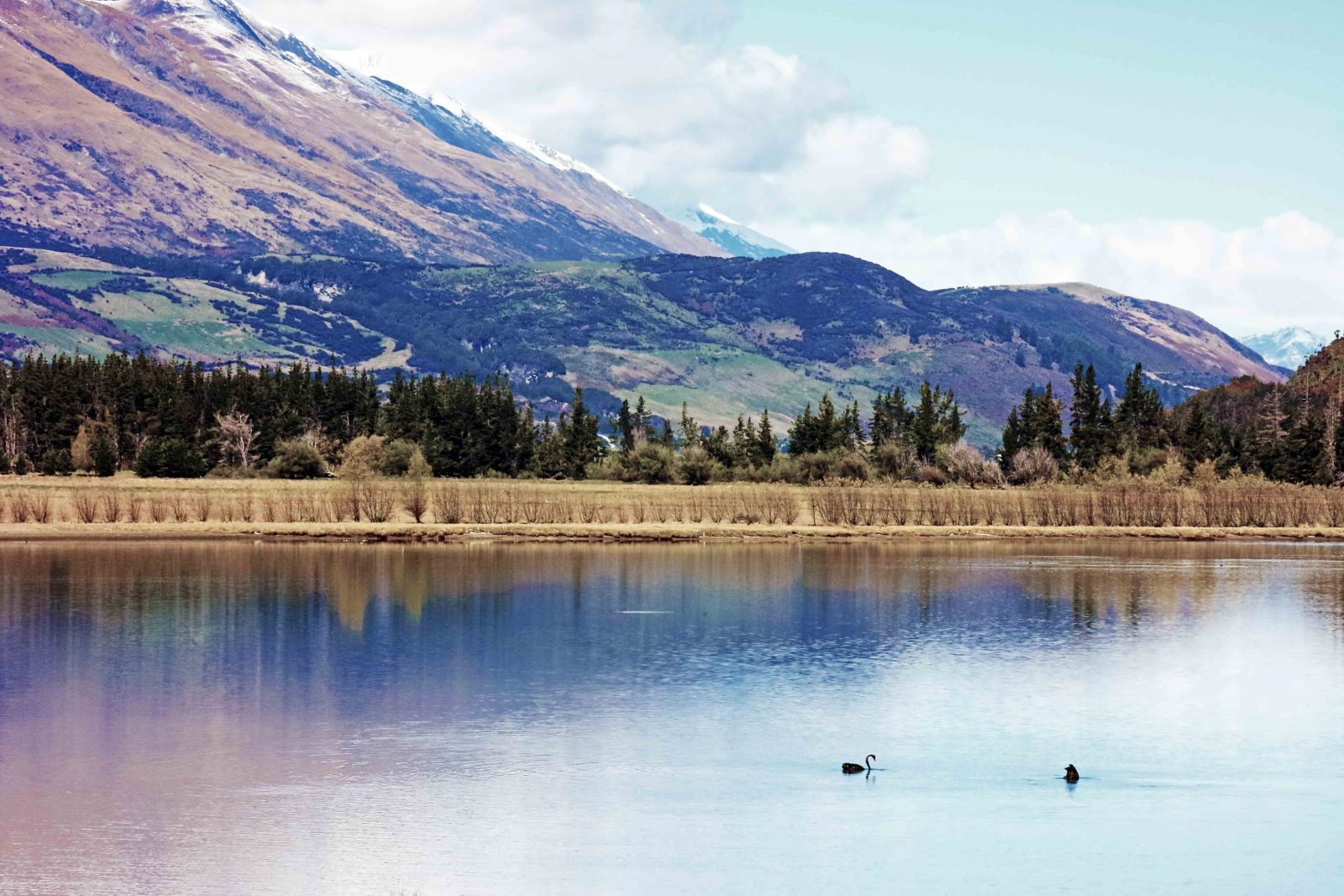 Diamond Lake Glenorchy