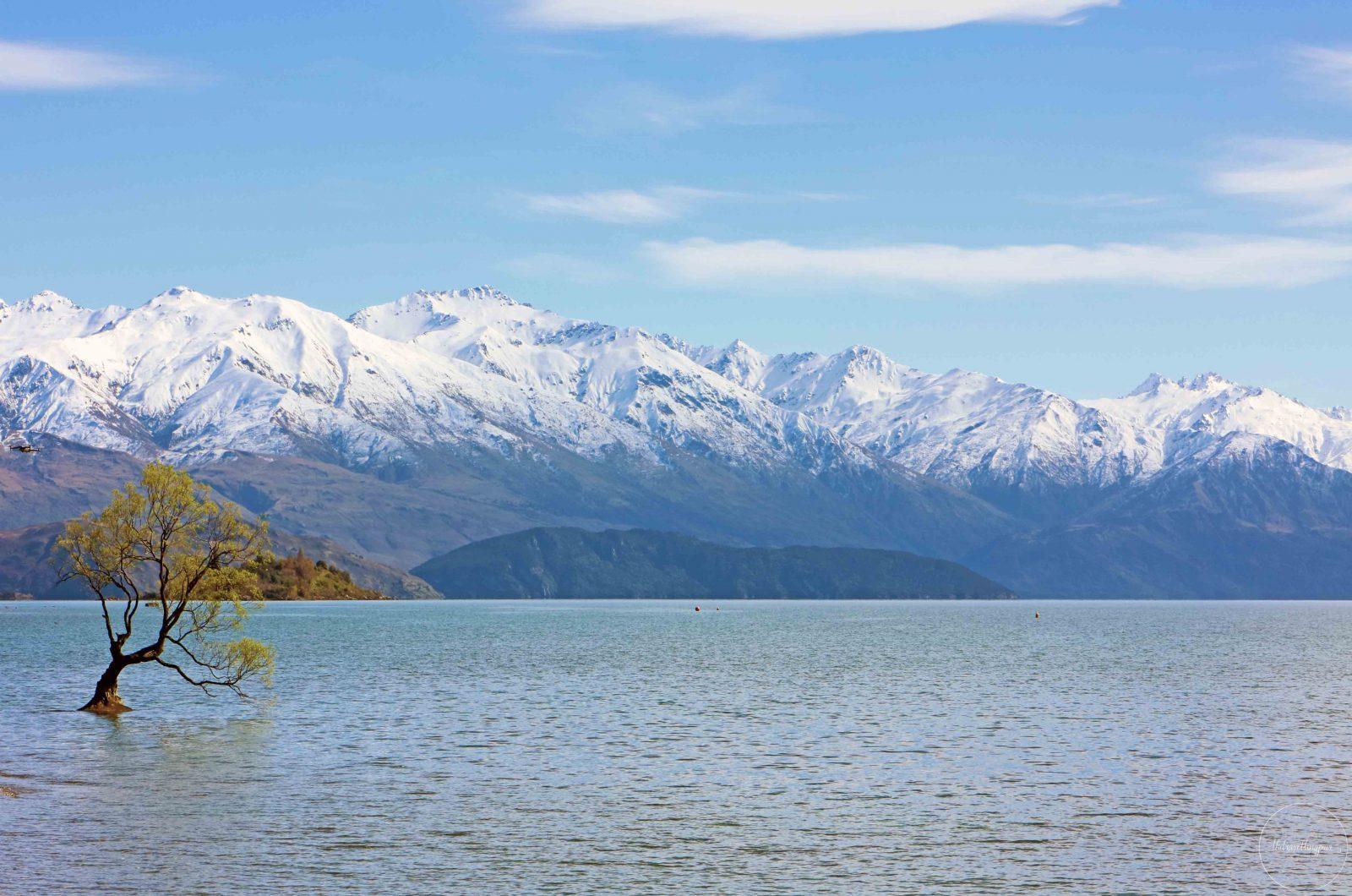 Lake-Wanaka-(3)