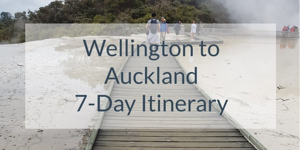 Wellington-to-Auckland Blog Post Photo