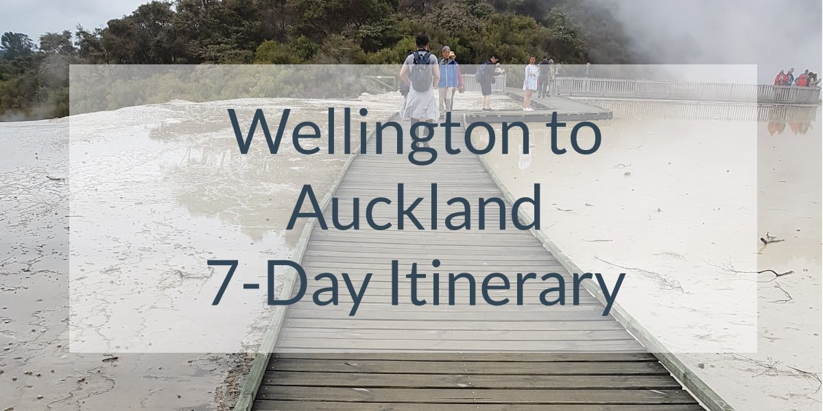 Wellington to Auckland 7-Day Itinerary