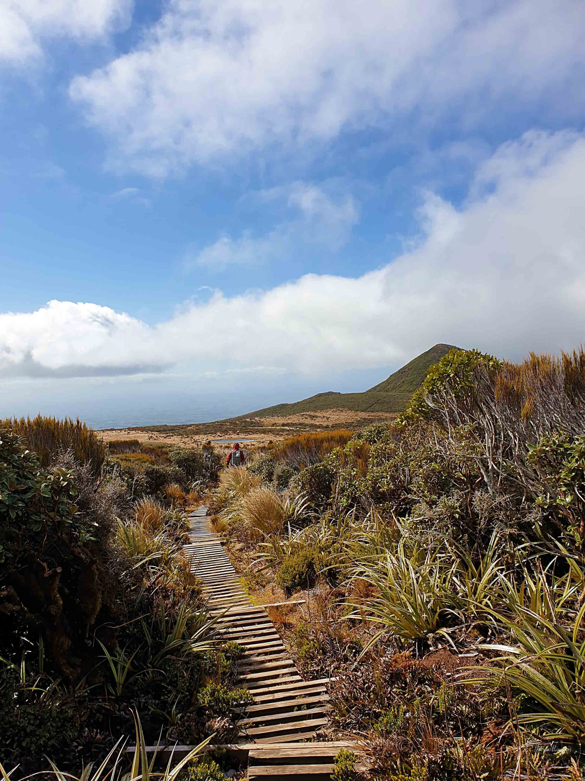 Pouakai Crossing, New Plymouth - Join the Travelling Pair